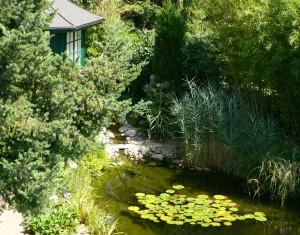 Kleingartenanlage agrar for Gartengestaltung dessau