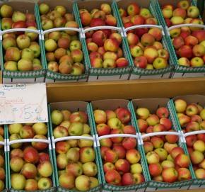 Obstpreise Aktuell