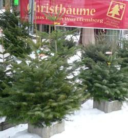 Weihnachtsbaum Kaufen Karlsruhe.Weihnachtsbaum Agrar Aktuell De